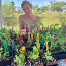 vendor-hot-plants-220x220.jpg